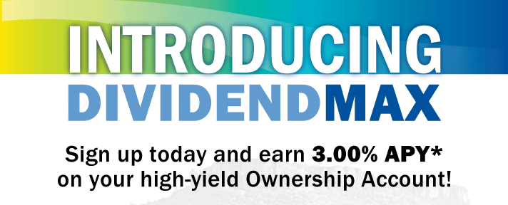 Introducing Dividend Max